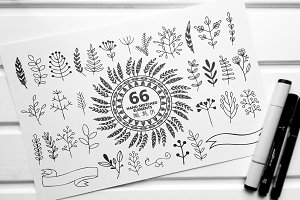 66 Hand sketched elements for design