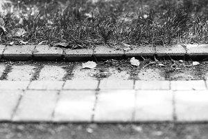 Horizontal black and white park pavement bokeh background