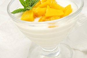 yogur con melocoton (3).jpg