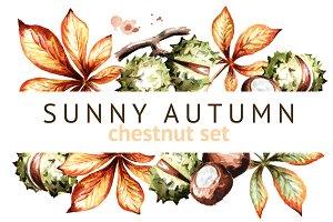 Sunny autumn. Chestnut set