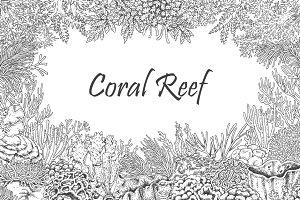 Coral Reef Monochrome