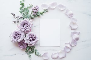 Lavender Blogger Single Image