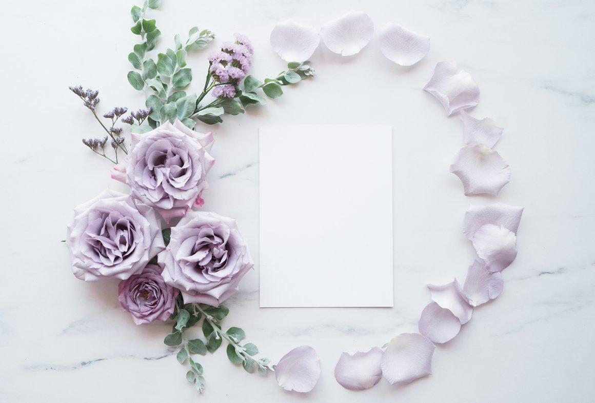 Lavender Blogger Single Image