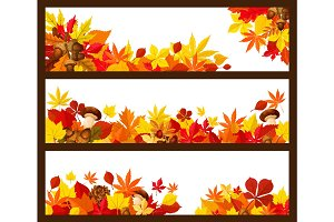 Autumn leaf banner border for fall season design