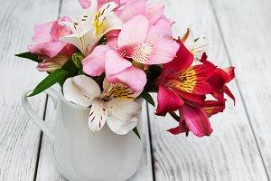 Alstroemeria flowers