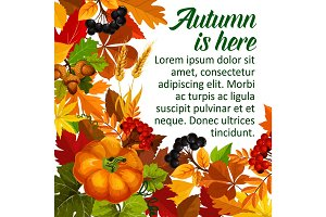 Autumn pumpkin and fall season leaf poster design