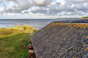 Yellow moss on the roof by the sea