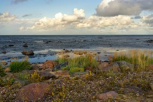 The coast of the Baltic Sea in the north