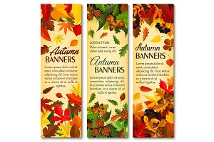 Autumn nature season banner set with fallen leaves