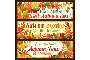 Autumn leaf banner, fall nature season border set