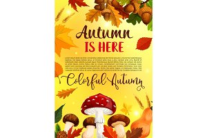 Autumn leaf fall in forest vector greeting poster