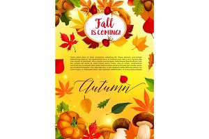 Autumn leaf and harvest vegetable banner template