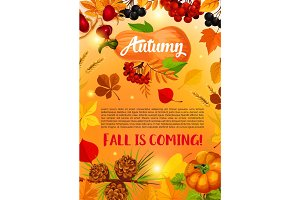 Autumn harvest banner with fall leaf, pumpkin