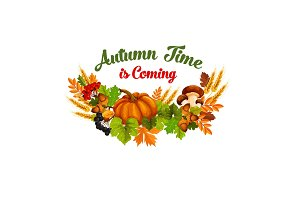 Autumn time vector poster of fall harvest