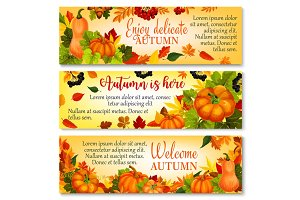 Autumn banner with pumpkin, fallen leaves, berry