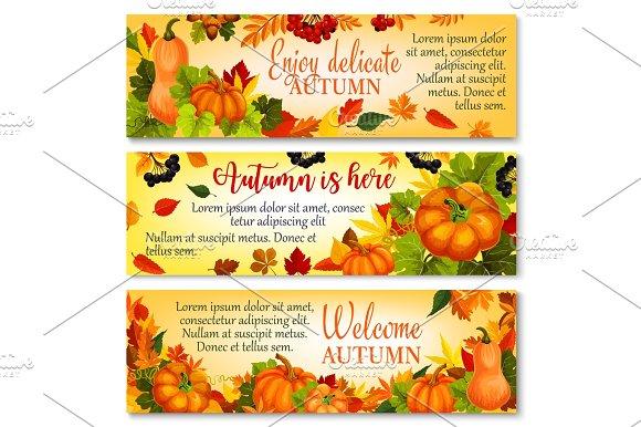 Autumn Banner With Pumpkin Fallen Leaves Berry