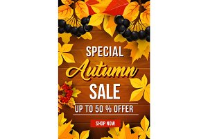 Autumn sale discount vector poster
