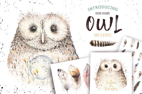 Watercolor owl & feathers collectio…