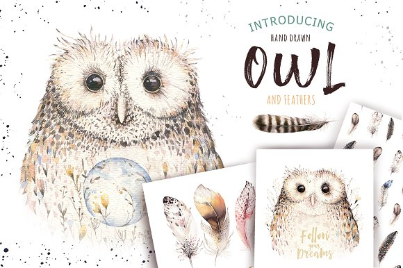 Watercolor Owl Feathers Collection