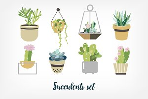 Succulent and cactus set
