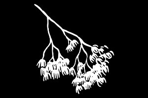 Branch silhouette sketch vector art