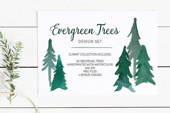 Evergreen Trees Clip Art
