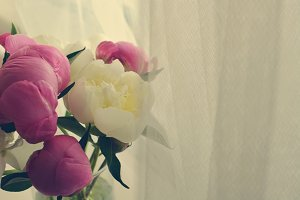 Pink and White Peonies Bouquet 2