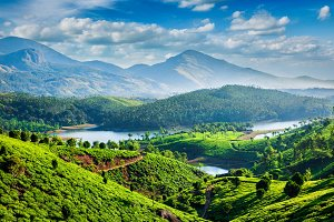 Tea plantations and river in hills