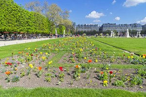 The garden of the Tuileries.