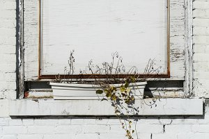 Boarded Up Window&#x3B; White