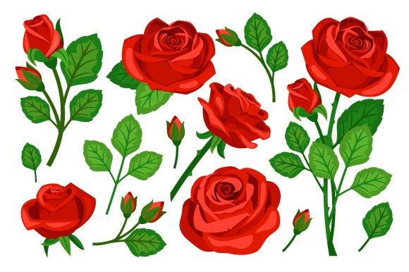 Red Rose Set
