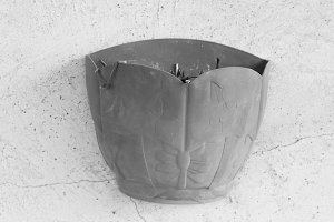 Pot Plant Detail