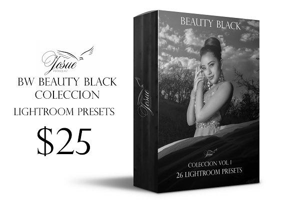 BEAUTY BLACK - LIGHTROOM PRESETS-Graphicriver中文最全的素材分享平台