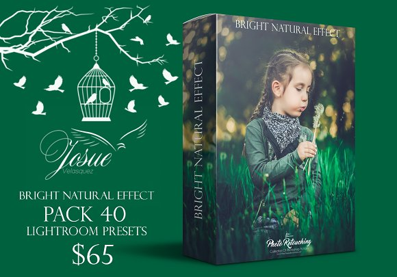 BRIGHT NATURAL-LIGHTROOM PRESETS-Graphicriver中文最全的素材分享平台