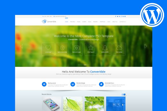 Convertible Business WP Theme