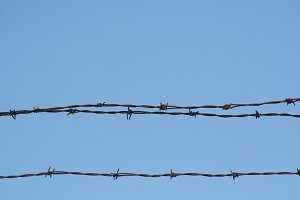 Barbed Wire & Blue Sky