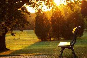 bench in natural city park at evening sunset. Outdoor autumn sunny photo