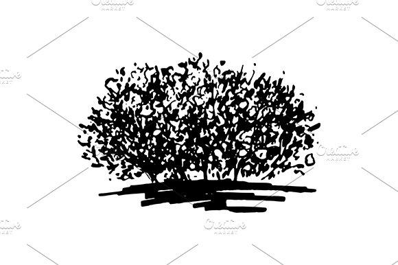 Monochrome Bush Sketch Art Vector