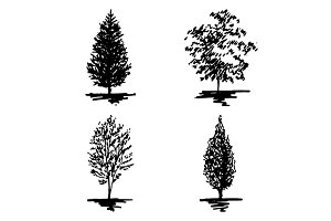 Monochrome tree sketch set vector