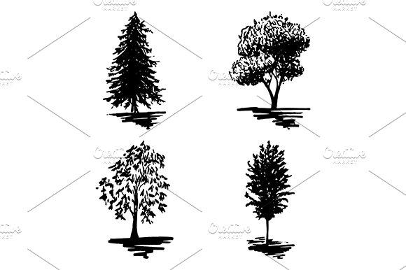 Monochrome Tree Sketch Set Vector
