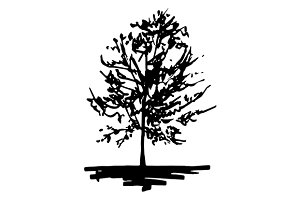 Monochrome tree sketch art vector