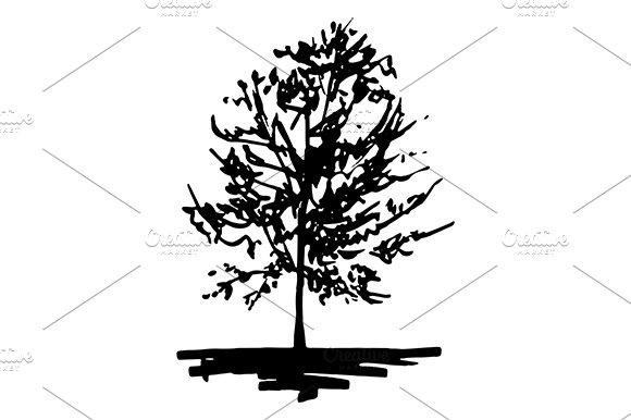 Monochrome Tree Sketch Art Vector
