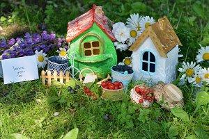 Lovely houses in grass1