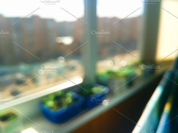 Sunny Day Balcony Bokeh Background