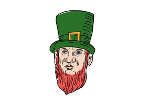Irish Leprechaun Wearing Top Hat