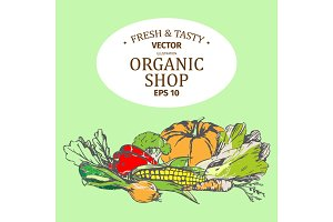 Shop with Organic Farm Products Set on Green