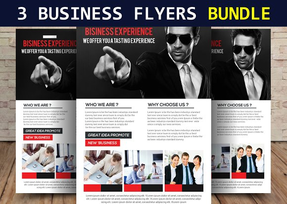 3 Businesss Flyers Bundle
