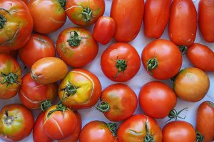 tomato vegetables food
