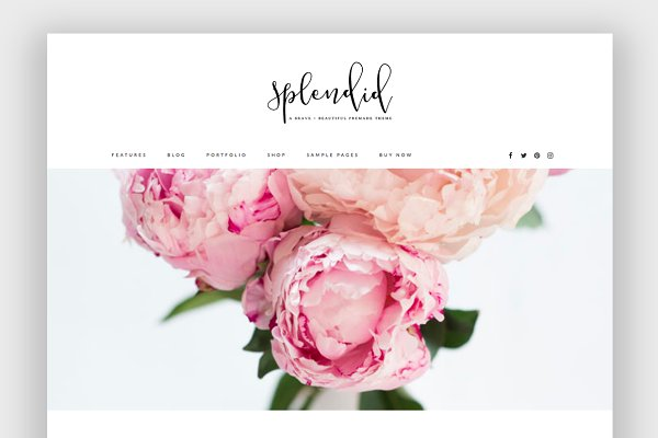 WordPress Photography Themes: brave + beautiful designs - Splendid Wordpress Theme