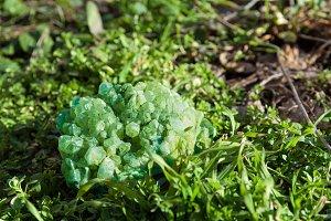 green gemstone mineral on grass